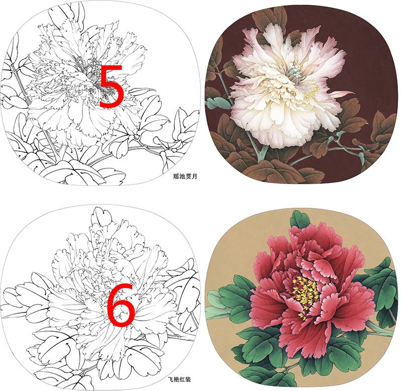 工筆畫打印白描底稿圓形團扇牡丹12幅初學者臨摹透稿勾線練習