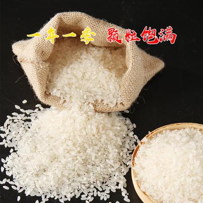 塞外香宁夏大米长粒香米大米5kg/10斤新米 真空装 2019非东北大米
