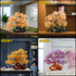 Natural Citrine Get Rich Lucky Money Tree Home Large Office Wine Cabinet Decoration Decoration Opening Gift