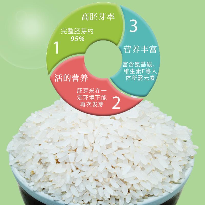 建福莱胚芽米内蒙稻花香大米500g装呵护宝宝健康儿童营养辅食米粥主图