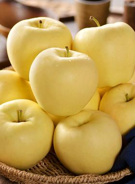 黄金帅苹果黄元帅苹果10粉苹果金帅婴儿新鲜刮泥蛇果面黄蕉牛奶油