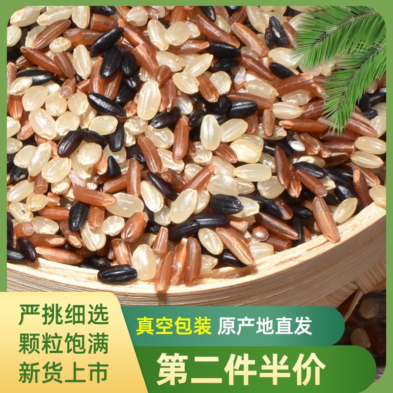 东北三色糙米 健身胚芽米 红米黑米