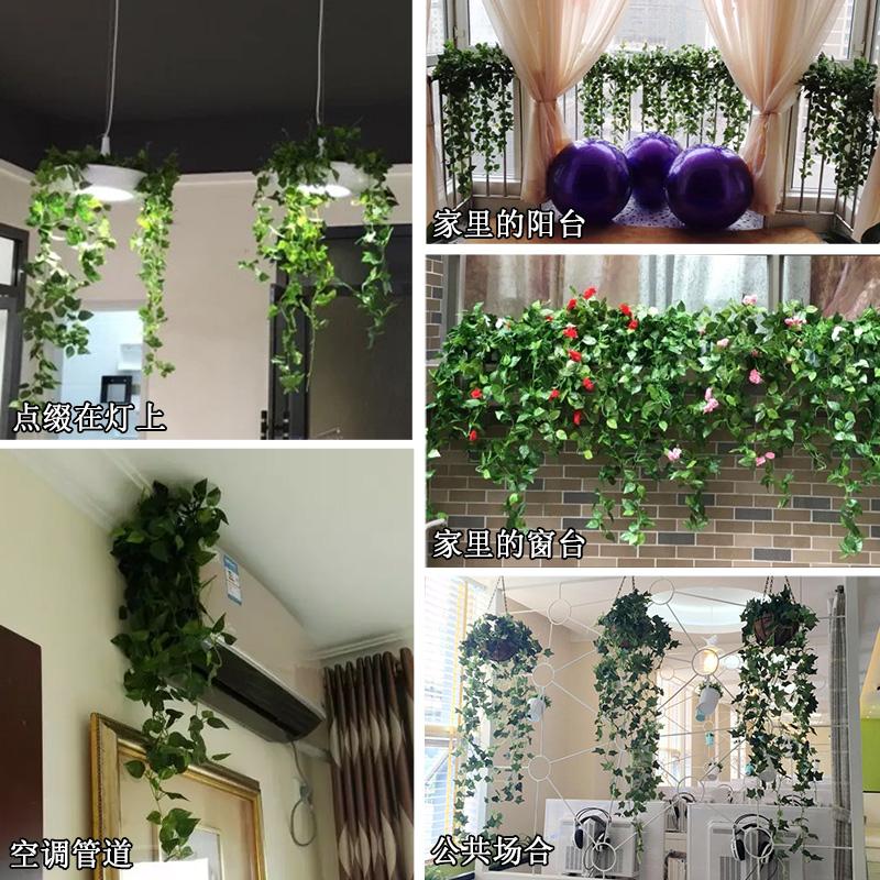 绿萝创意假花藤仿真藤条管道遮挡室内装饰树叶装饰客厅挂
