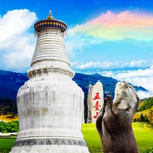 五台山一日游 头等舱小团 首站五爷庙 小朝台 太原到山西旅游门票