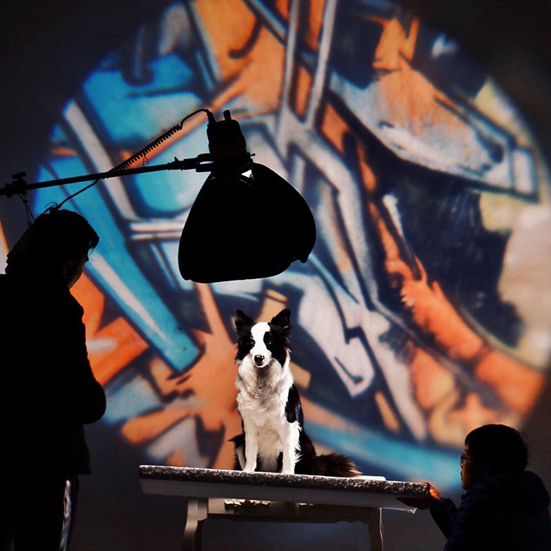 鑫威森40*40CM折叠便携式 LED摄影灯 外拍闪光灯机顶闪光灯柔光箱