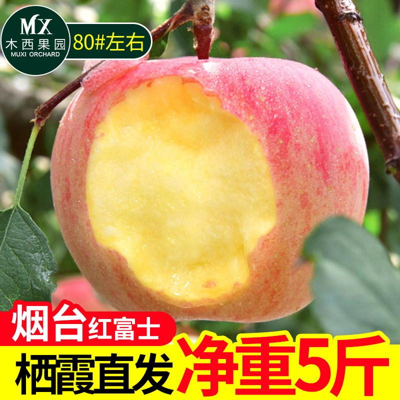 脆甜多汁新鲜山东烟台红富士苹果应季当季水果批发3斤5斤10斤包邮