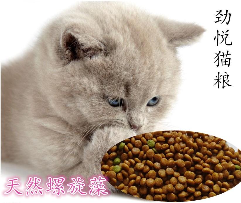 劲悦北欧黄金海岸天然猫粮1kg幼猫成猫奶糕美毛明目祛毛球猫粮优惠券