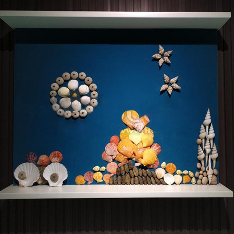 各种小海螺 天然贝壳海螺鱼缸装饰 地中海风格家居摆件创意漂流瓶