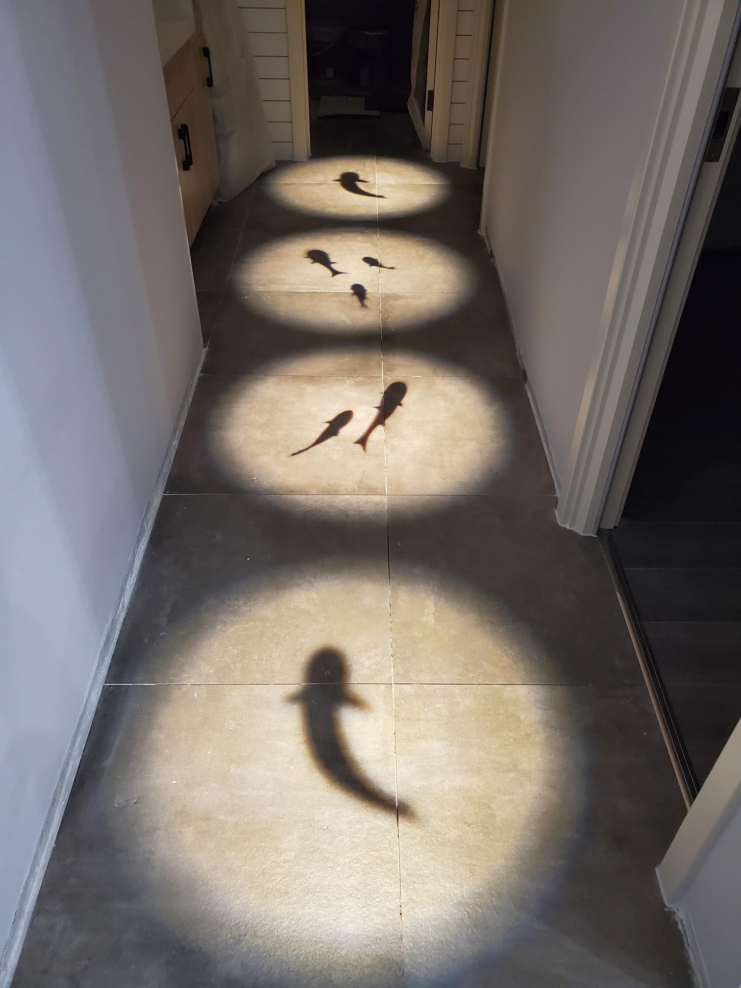 灯投影鱼图案家用走廊过道筒灯