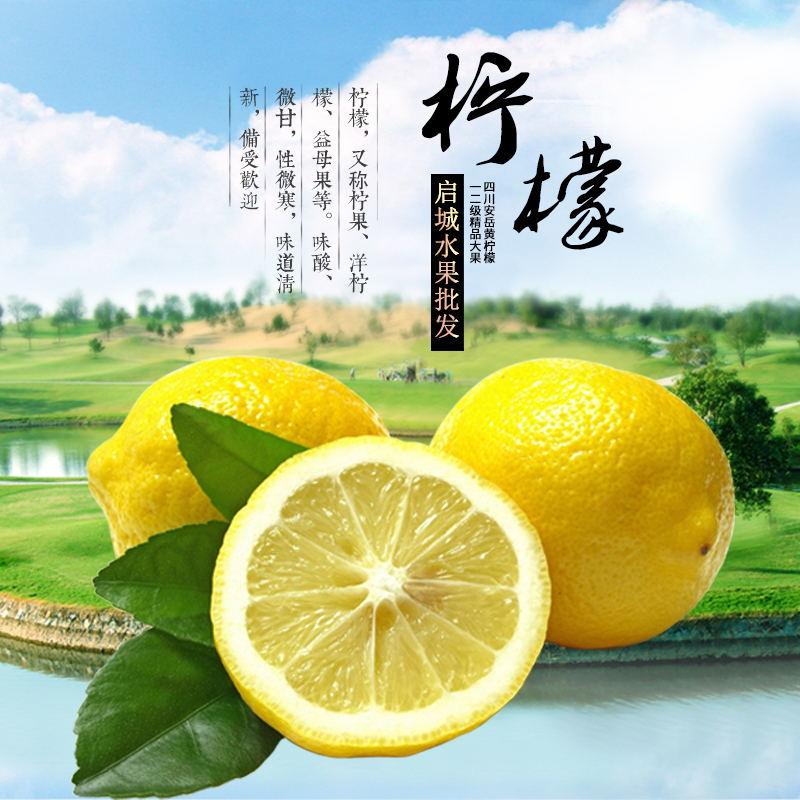 现摘现发新鲜黄柠檬二三级中大果皮薄多汁5斤装坏果包赔免邮