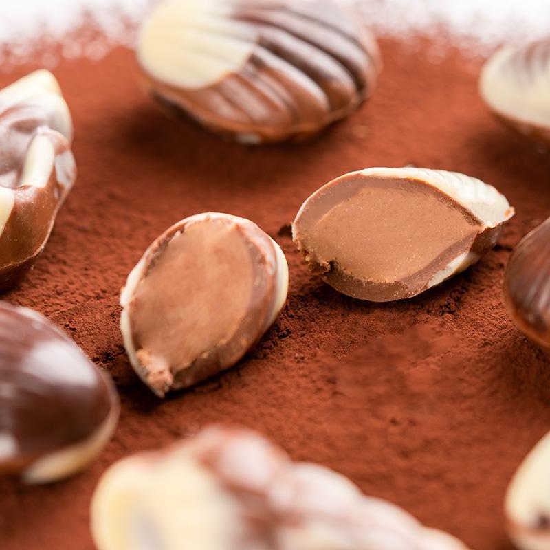 比利时进口landbase贝壳巧克力礼盒250G生日节日礼物送礼女友朋友优惠券
