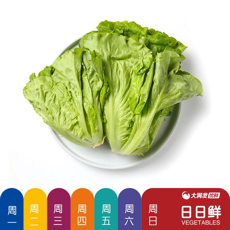 绿叶生菜蔬菜300g/份