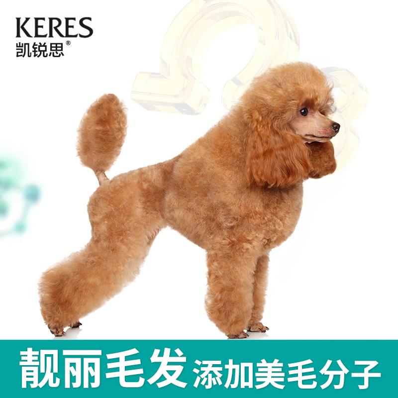凯锐思贵宾泰迪狗粮幼犬成犬小型犬通用型天然奶糕粮泰迪2kg优惠券