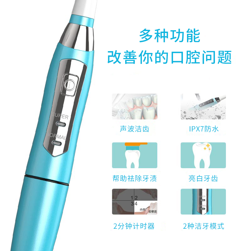 赛嘉电动牙刷成人软毛防水家用非充电式情侣声波自动电动牙刷E1