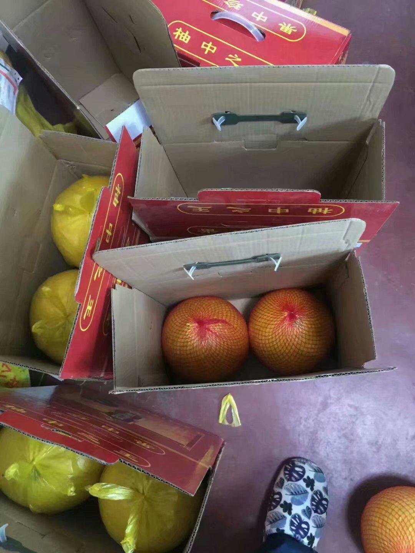 玉环文旦柚子16斤四个礼盒装 楚门特产新鲜水果包邮 非沙田红心胡