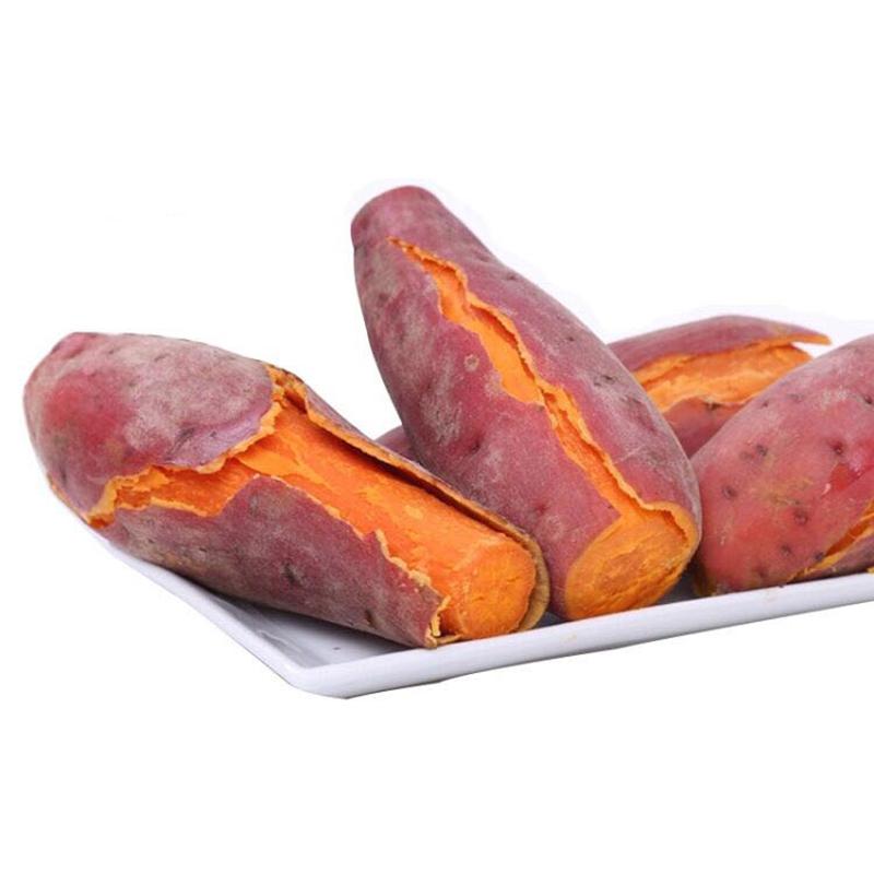 红薯2019新鲜地瓜 番薯农家六鳌沙地红心蜜薯板栗福建山芋现挖