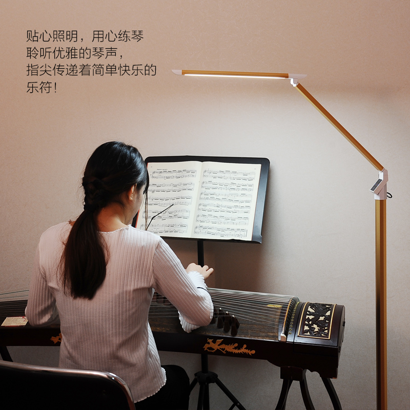 书房阅读遥控立式灯 led 钢琴灯乐谱灯练琴专用落地灯护眼台灯古筝