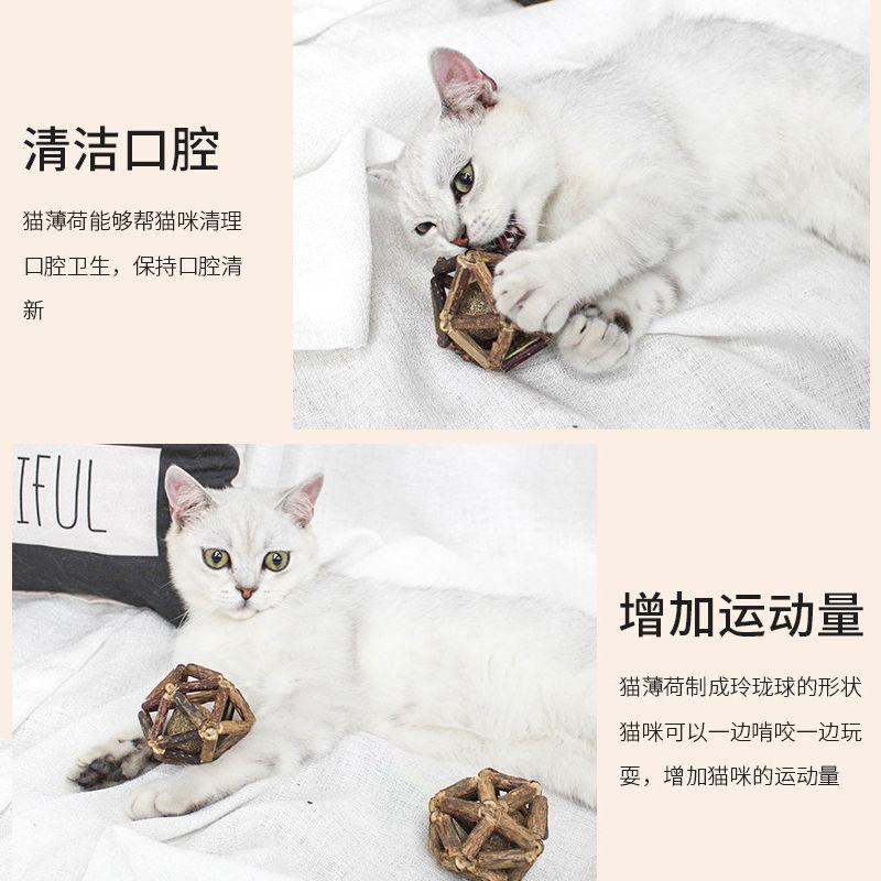 猫咪玩具玲珑球发声玩具