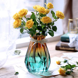 European creative glass vase hydroponic green plant dry flowers vase vase restaurant living room decoration ornaments