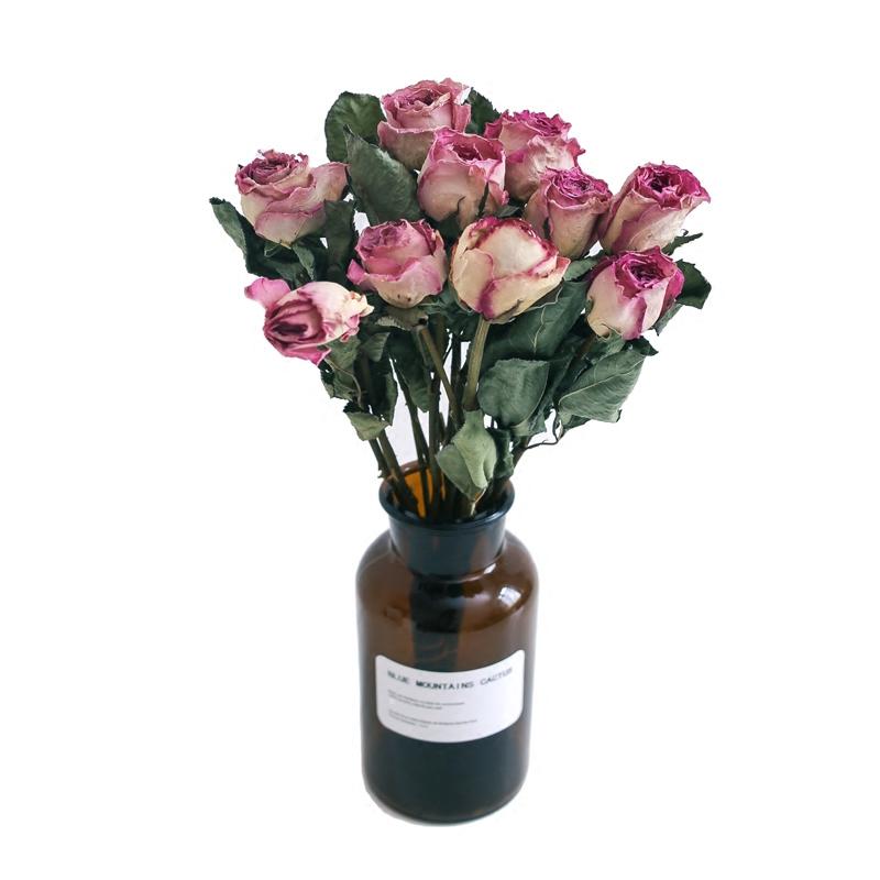 南栖于野玫瑰干花干花束家居摆设小清新树枝北欧网红ins花束真花