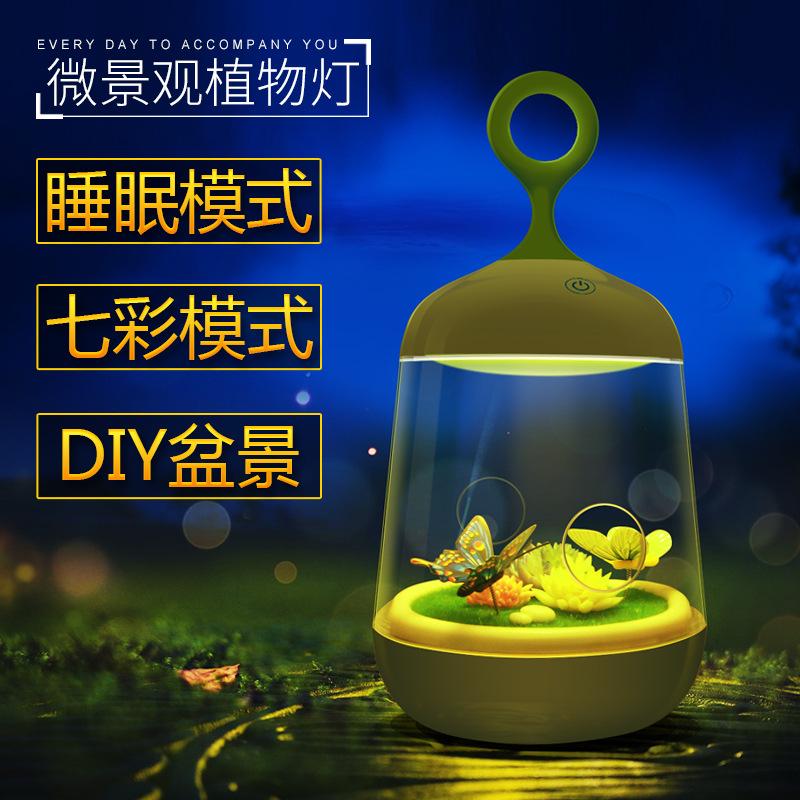 创意微景观植物灯DIY盆栽小夜灯充电卧室床头七彩灯刻字定制爆款