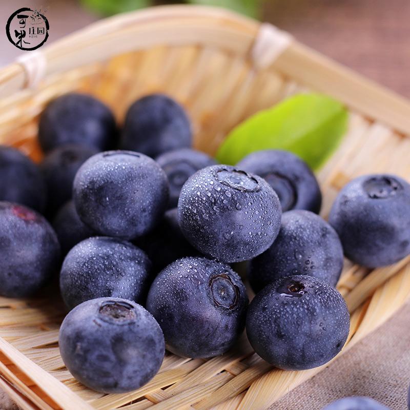 新鲜蓝莓2019年蓝莓鲜果云南现摘蓝莓新鲜水果1斤顺丰包邮