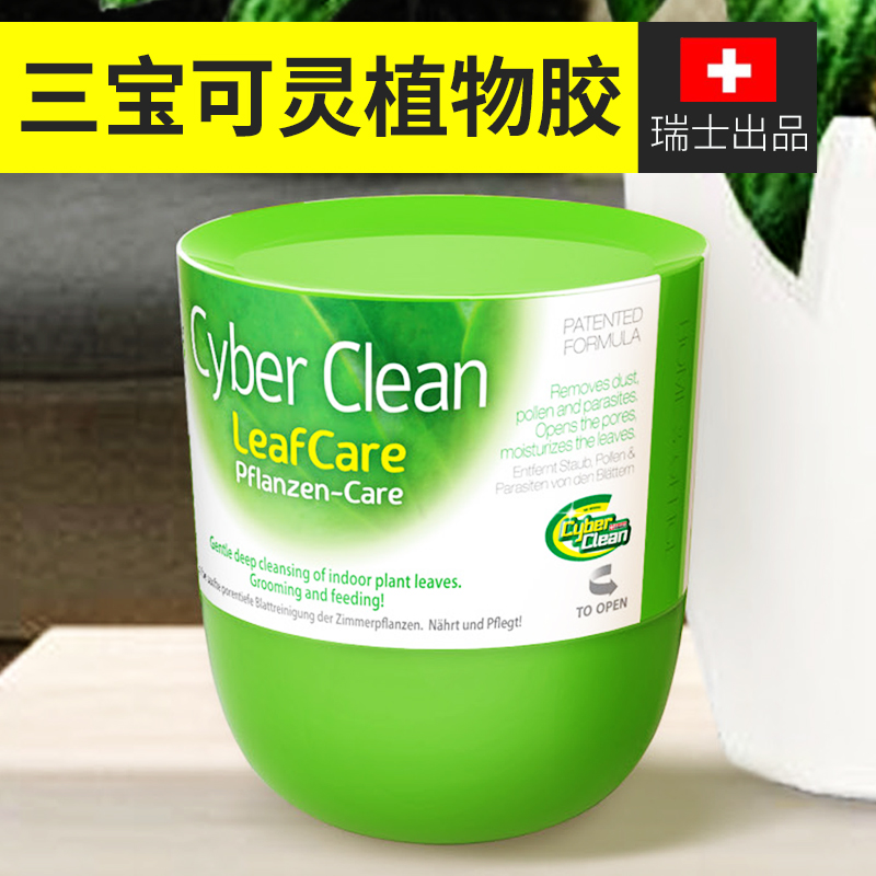 Buy Cyber clean sambo can be spiritual fleshy cactus plant leaves