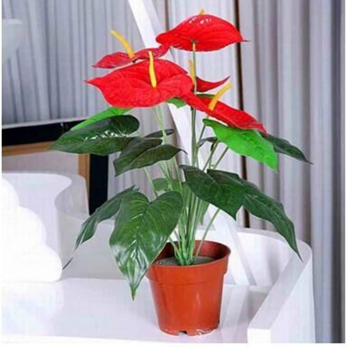 Buy Simulation Feel Artificial Plants Red Palm Potted Artificial Flowers  Artificial Flowers Silk Flower Plastic Flower Home Decoration Living Room  Set In ...