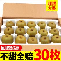 四川红心猕猴桃大果水果新鲜包邮当季奇异果整箱泥弥猴桃大超甜10