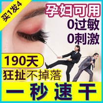 Own eye-opening graft eyelash glue personal no irritation waterproof allergy eyelash shop dedicated to planting fast dry lasting