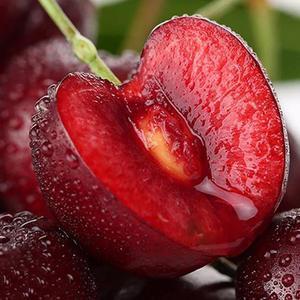 黑山谷樱桃 – 重庆-綦江特产