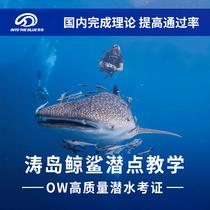 泰国涛岛潜水酷潜校区OW+AOW涛岛潜水中文深潜考证南园岛苏梅潜点
