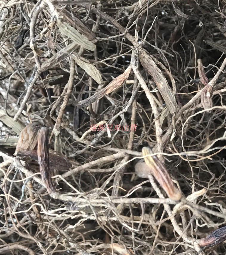野生双叶单叶石橄榄干货石仙桃野生岩珠石莲浮石斛果图片