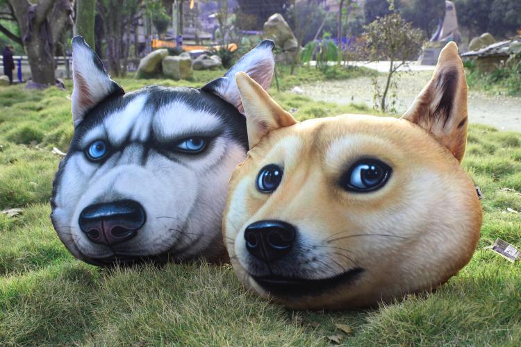 柴犬狗头动态很快今天我表情表情包乐图片