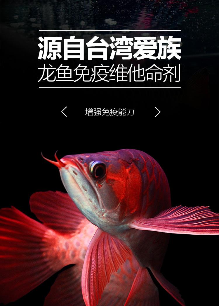 【台湾爱族】龙鱼免疫维他命剂龙鱼维生素银龙/金龙鱼