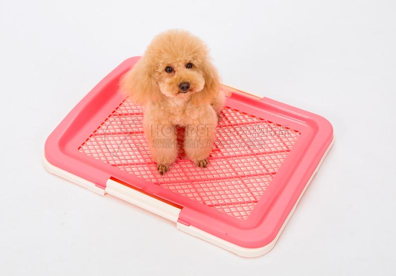 泰迪狗小号厕所大号教程带立柱大型犬狗公狗sk6226平板量产图片