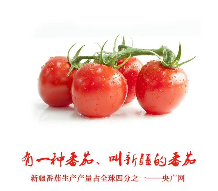 热卖雪山赠礼新疆番茄膏桶装半球红纯番茄酱茄汁面火锅纯天然850g罐
