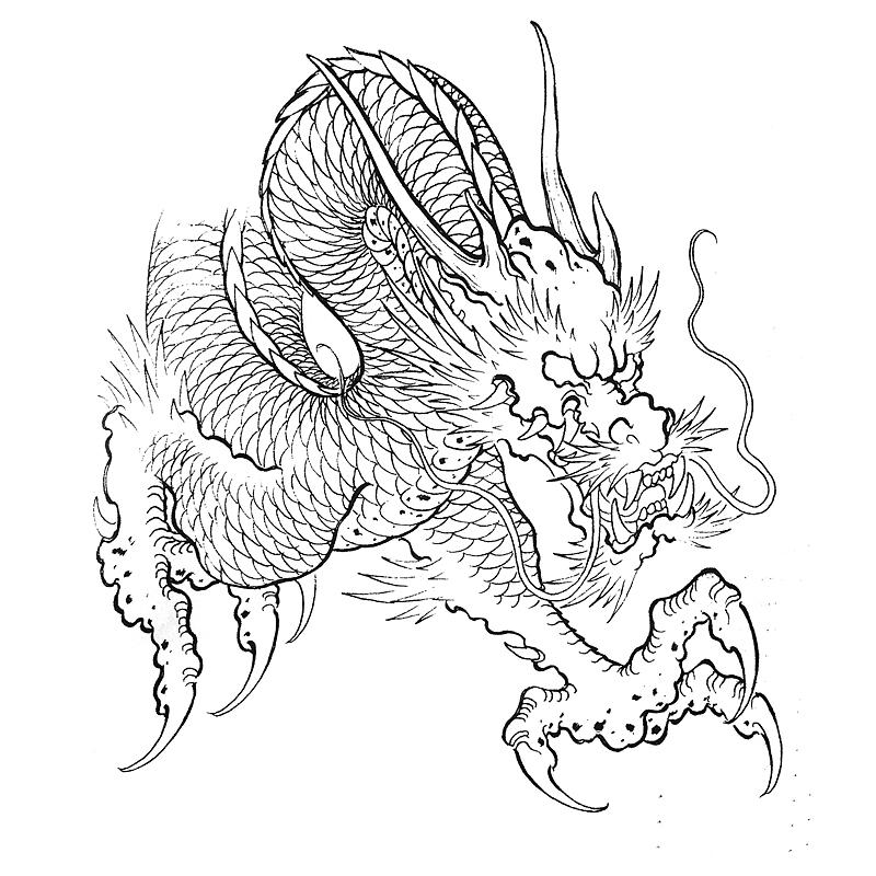 龙凤呈祥花臂纹身手稿