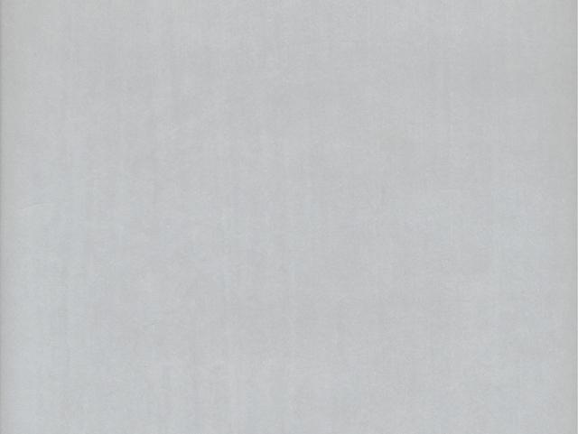 荷兰进口无纺布现代简约水泥灰素色纯色客厅卧室满铺墙壁纸343104图片