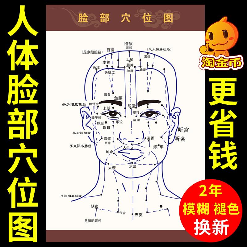 面部美容的穴位按摩方法和作用_5篇