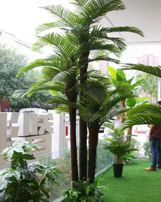 假树盆景_假槟榔和大王椰子_假椰子树