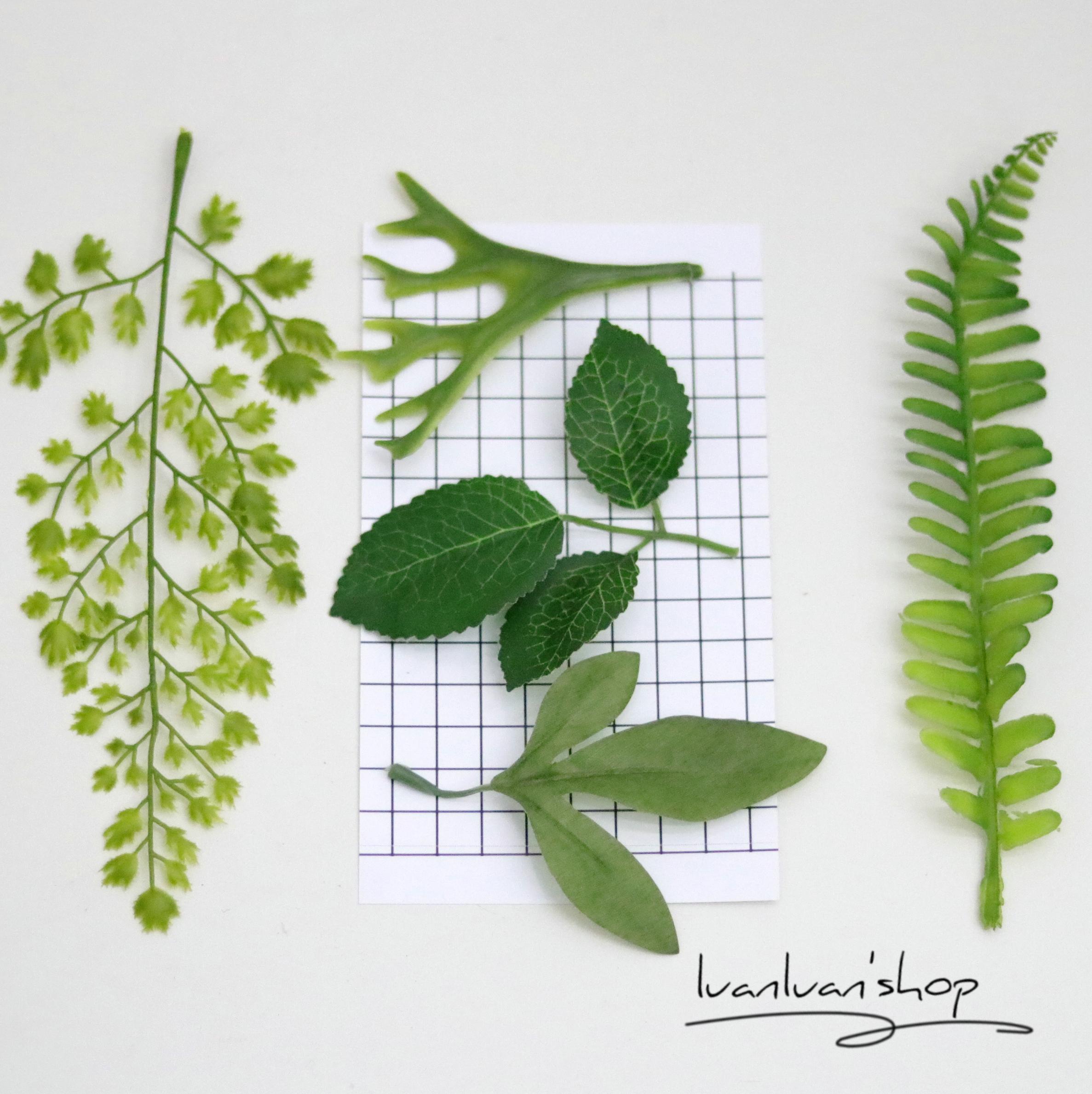 热卖极简ins北欧风绿植集合 热带植物芭蕉叶树叶拍照道具chic房间布置图片