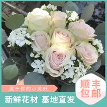 鲜花速递混搭花束玫瑰康乃馨小雏菊向日葵鲜切花云南昆明基地直发