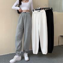 白色运动裤女卫裤宽松束脚裤直筒春季2021新款高腰萝卜裤休闲裤子