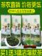 | Цена 1109 руб | Купить 1 отдавать 3 железо гуань-инь сейф ручей 2020 новый чай весна чай аромат тип орхидея ладан черный дракон чай не- специальная марка масса чай
