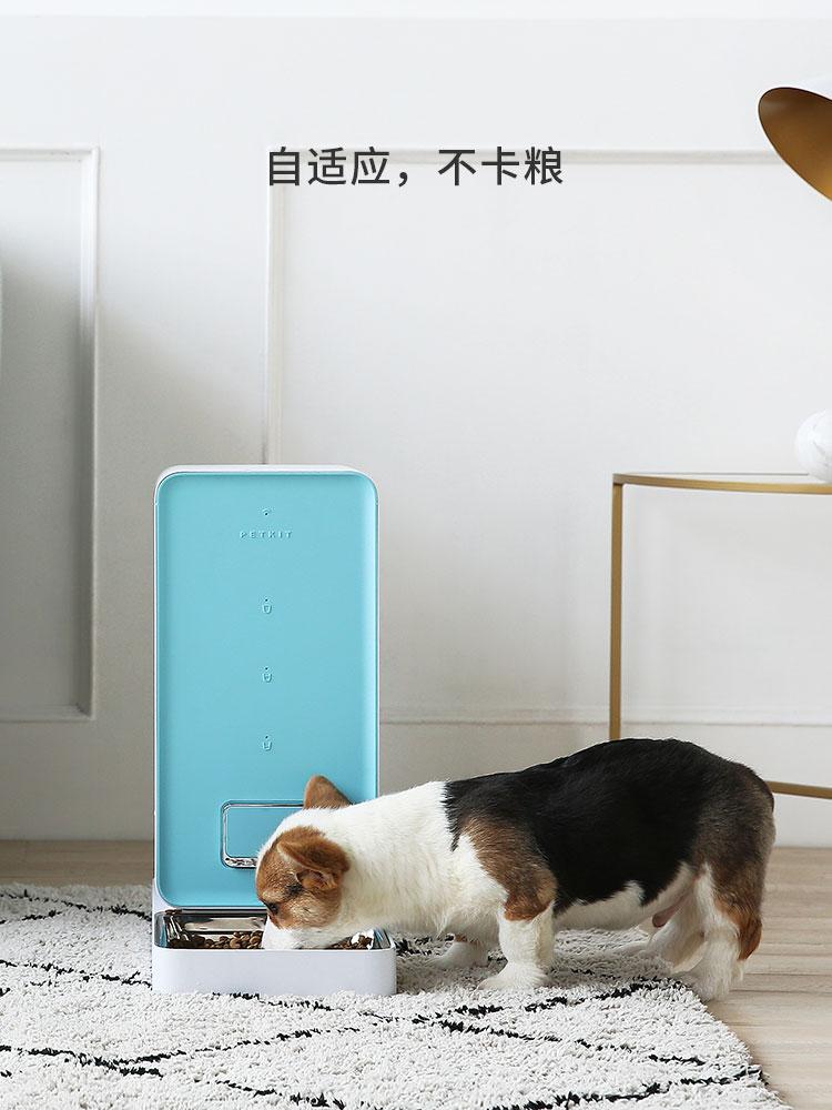 抖音同款宠物用品:狗狗喂食器+饮水机