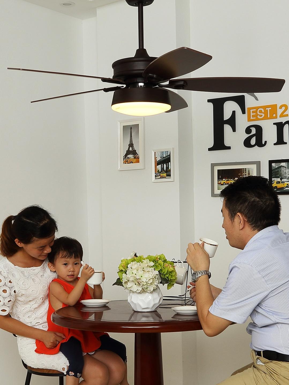 桥田美式吊扇灯 餐厅风扇灯简约家用北欧电扇灯复古客厅风扇吊灯