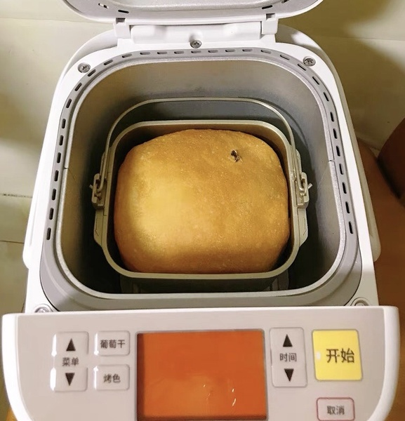 松下P1000智能面包机