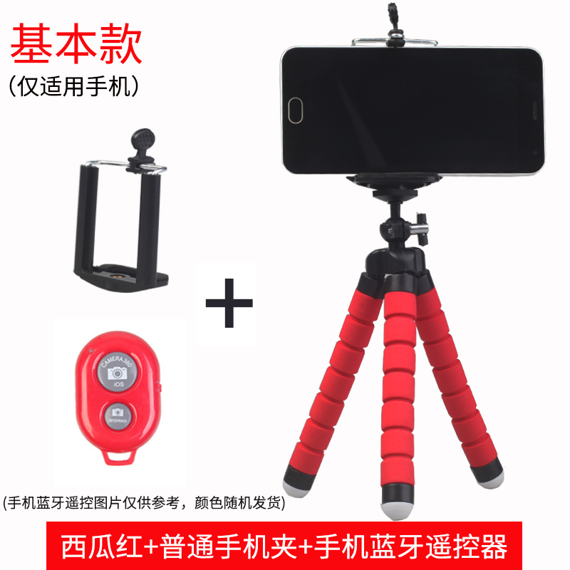Basic Section   Red + Mobile Phone Clip + Bluetooth Remote Control