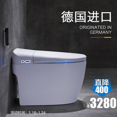 German imports Delang Steen integrated smart toilet instant hot household toilet automatic flip electric